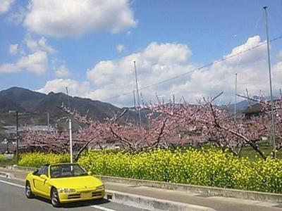 春日居24.JPG